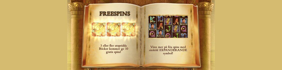 Bonus och free spins i Book of Dead